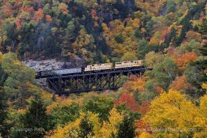 11 New England Fall Foliage Photography Tips