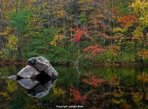 Intimate New England Landscape Photography